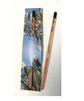 crayon mojito